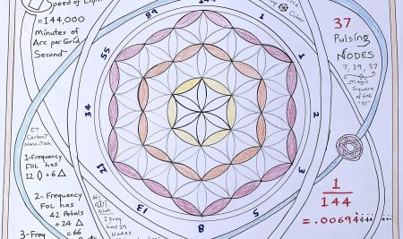 CODE 144 IN THE FLOWER OF LIFE: FOL=SOL (Speed Of Light)  Jain 108 Discovery